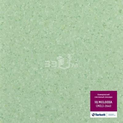 Коммерческий линолеум Tarkett IQ Melodia CMELI-2640 (2 м)