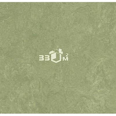 Линолеум Marmoleum Real FORBO, Marmoleum Real 3240 willow (2 м)