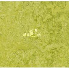 Линолеум Marmoleum Real FORBO, Marmoleum Real 3224 chartreuse (2 м)